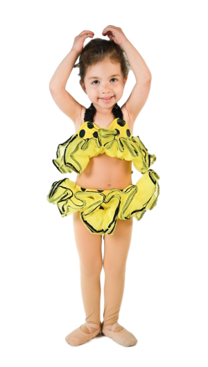 Shine Dance Company - preschool ballet and tap classes